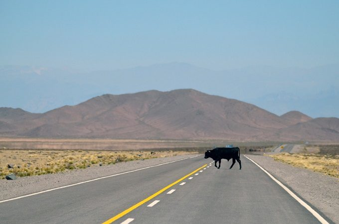 Viajar pelo Mercosul de carro