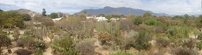 Dicas do México: clima
