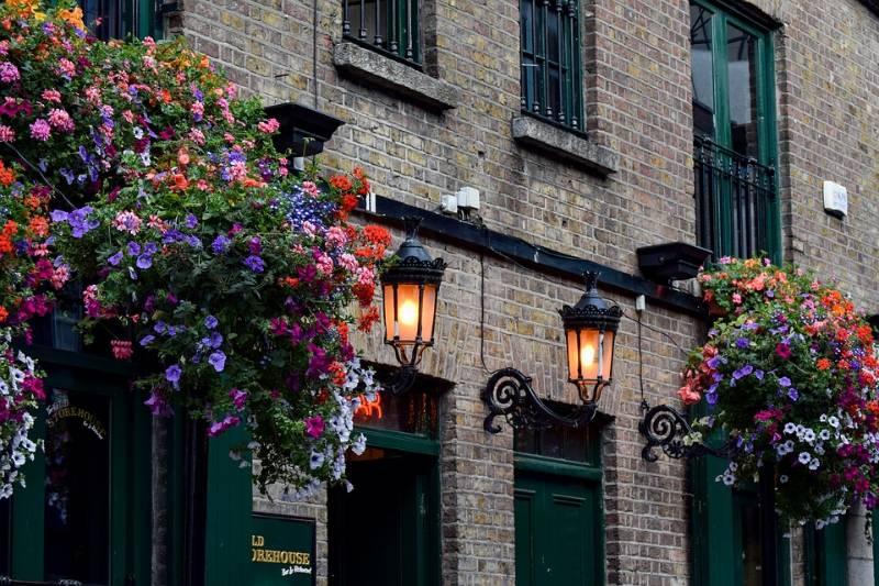 O que fazer em Dublin grátis: casas históricas com arranjos de flores coloridas