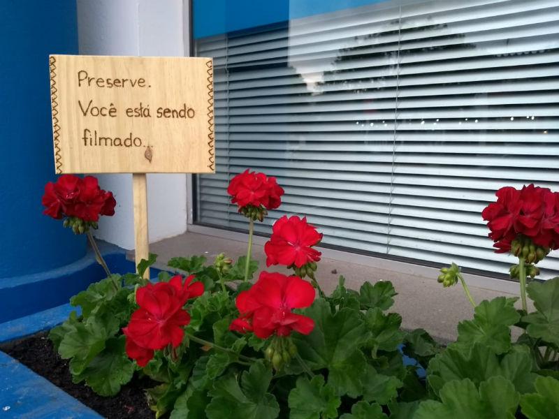 """Flores em São Francisco de Paula com um cartaz que diz """"Preserve, você está sendo filmado"""""""