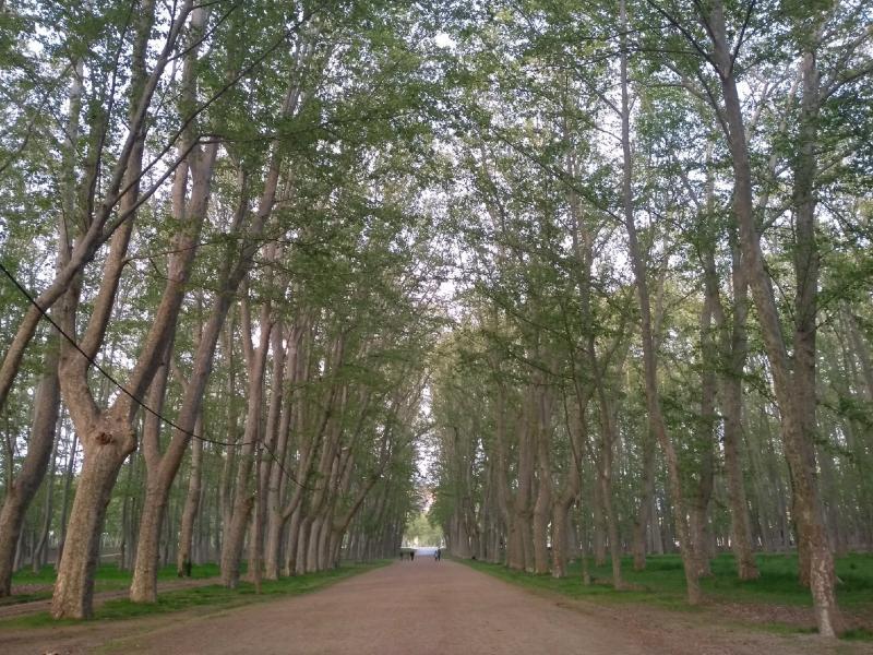 Pertinho do parque Devesa é um dos bons lugares onde ficar em Girona